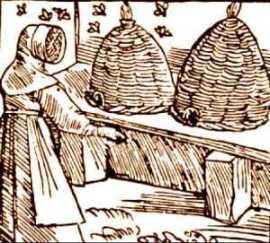 bees-sebastian-munster-medieval